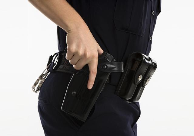 crime deterrence guard