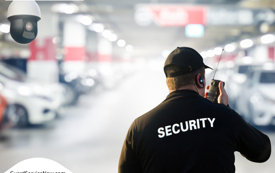 a parking lot security officer in a vehicle park